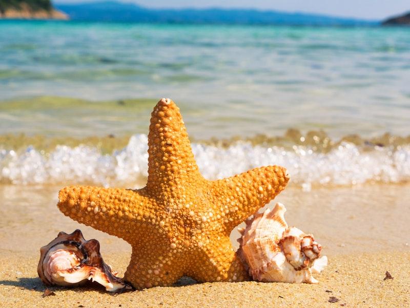 morská pláž ideálna na dovolenku