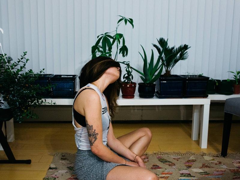 detox vzduchu - rastliny v byte