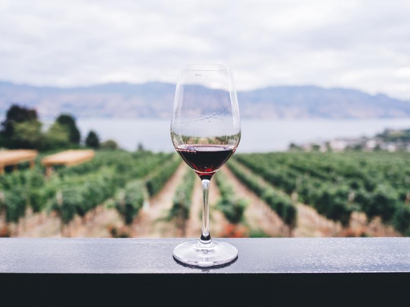 všetký vínne festivaly na slovensku leto 2019