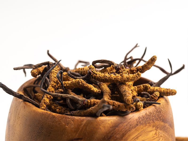 Spoznajte všetky zdravotné benefity zázračnej huby s názvom Cordyceps