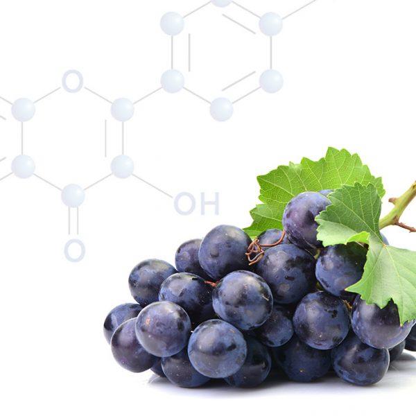 Kvercitín je prirodzené farbivo nachádzajúce sa vo viacerých potravinách